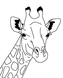 giraffe outline illustration free stock photo public domain pictures