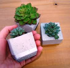 Flower Pot Wedding Favors - succulent wedding favour concrete planter trio gold succulent