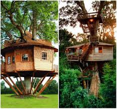 tree house floor plans for adults wood floors