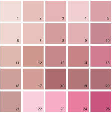 best 25 benjamin moore pink ideas on pinterest blush pink paint