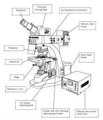 sc606 new five waveband g b bv v u fluorescence microscope for