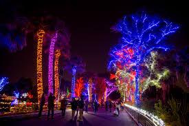 Zoo Lights Houston by Phoenix Zoo Christmas Lights Christmas Lights Decoration