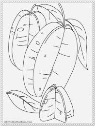 star fruit coloring pages free printable kids coloring pages