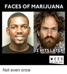 faces of marijuana 2 hits later weed not even once not even once