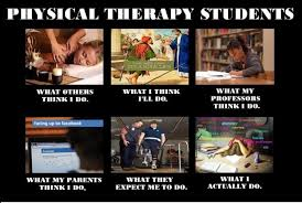 Physical Therapy Memes - physical therapy memes think i do what i really do meme