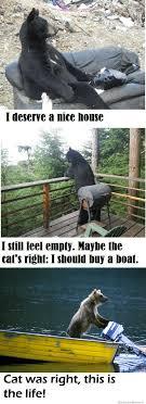 Cat Buy A Boat Meme - introspective bears weknowmemes
