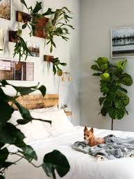 cozy jungle bedroom makeover u2014 probably this