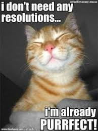 New Years Resolution Meme - 7 funny new year s resolution memes to post on social media