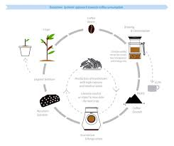 a new coffee ecosystem yanko design