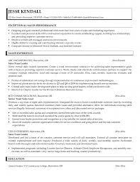 Sample Resume Sales Representative by Download Sample Resume For Leadership Position