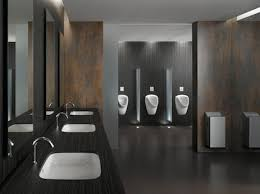 european vs american bathrooms better living products