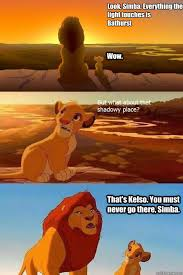 Bathurst Memes - look simba everything the light touches is bathurst wow that s