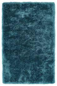 Rugs With Teal Best 25 Teal Area Rug Ideas On Pinterest Teal Rug Transitional