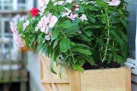 diy window flower boxes how to build a cedar window box planter