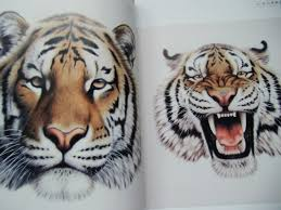 china tiger faces painting book flash design