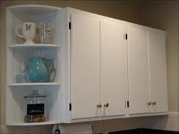 Easiest Way To Refinish Kitchen Cabinets Kitchen Cabinet Painting Ideas Refinishing Oak Kitchen Cabinets