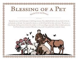 pet prayer churchpublishing org st francis blessing of a pet