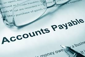 the why and how of auditing payables and expenses cpa scribo