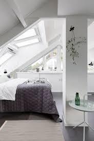 roof blinds for velux windows hege in france