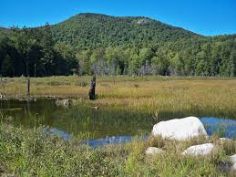 land in madison nh by bill barbin at pinkham real estate north