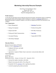 resume templates for undergraduate students accounting internships resume examples virtren com sample resume for summer internship in finance frizzigame