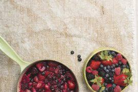 cuisiner des brocolis surgel駸 best nutritional supplements for your pets journal singapore