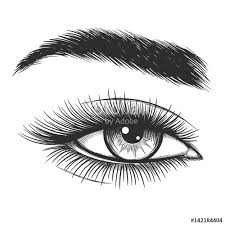 beautiful lady eye hand drawn vector illustration closeup woman