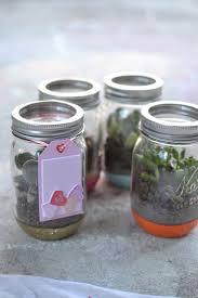 the 25 best terrarium jar ideas on pinterest