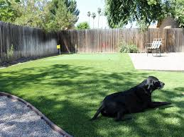 Small Backyard Putting Green Fake Turf Ventura California Indoor Putting Green Backyard Design