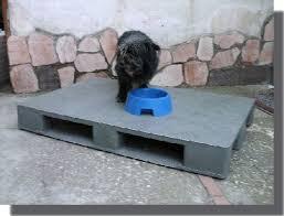 pedane per cani pedane per canili pedana canile 80x120 h15
