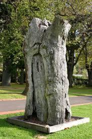 file scarred tree fitzroy gardens jpg wikimedia commons