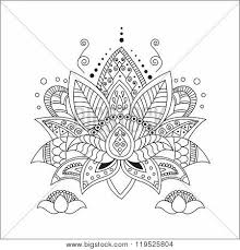 lotus images illustrations vectors lotus stock photos images