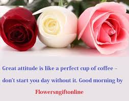 best online flower delivery 8 best online flower delivery to mumbai images on big