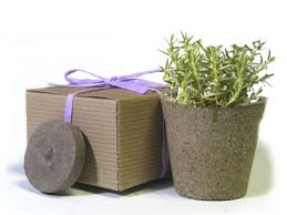 eco friendly wedding favors let s go shopping favor creative