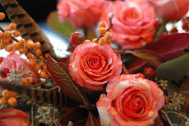 thanksgiving day flowers bunny cakes flowers u0026 gardening