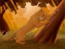 155 lionking u003c3 images lion king