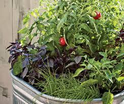 Urban Veggie Garden - 12 savvy small space urban gardening designs u0026 ideas webecoist