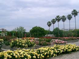 nagai botanical garden sights and facilities search osaka info