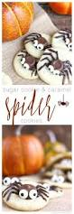 Halloween Cakes Easy To Make by Best 25 Spider Cupcakes Ideas On Pinterest Spooky Treats