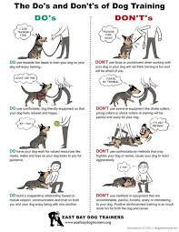 boxer dog training tips dog training tips dos and don u0027ts http www
