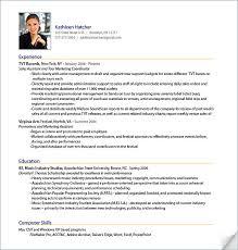 professional resumes exles it professional resume shining professional resume exle 12