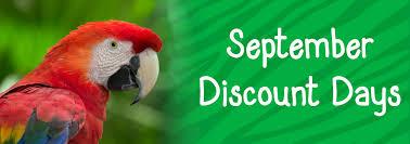 spirit halloween melbourne fl special events brevard zoo