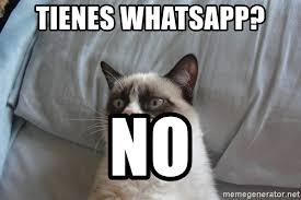 Grump Cat Meme Generator - tienes whatsapp no grumpy cat meme generator