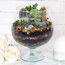 how to make a diy terrarium u2014 doodle and stitch