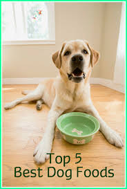 top 5 dog foods best dog foods reviewed dog food dog food