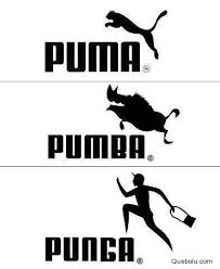 Puma Meme - puma punba y punga puma punba memes en quebolu