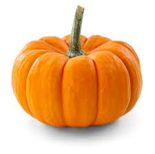 it u0027s pumpkin time u2013 family food blog