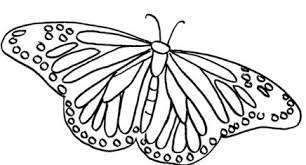 imagenes de mariposas faciles para dibujar dibujos para colorear de mariposas grandes imagenes de mariposas