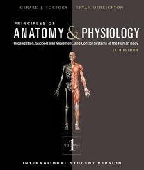 Human Anatomy Pdf Books Free Download Human Anatomy And Physiology Books Free Download With Courses Of