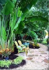 tropical garden designs tropical garden designs for small gardens